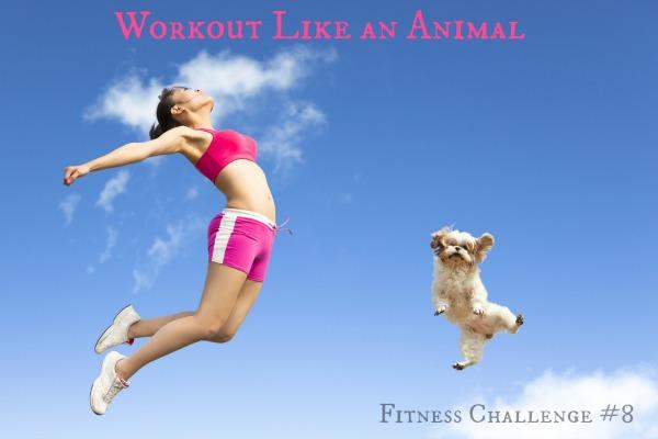 fitness challenge 8